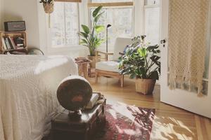 Photo d'une chambre lumineuse avec un tapis oriental, un fauteuil marocain et des plantes